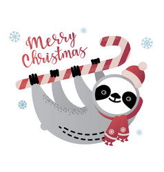 cute sloth bear animal with a candy cane vector image