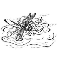 Dragonfly on a leaf vector
