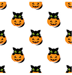 pumpkin pattern and black cat vector image