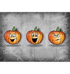 pumpkin texture grey vector image
