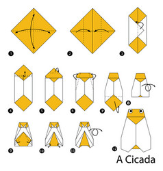 Step instructions how to make origami a cicada vector