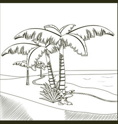 Tree palms on desert hand drawn vector