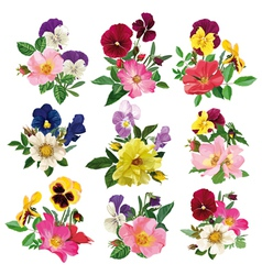 set of the pansy and roses vector image vector image