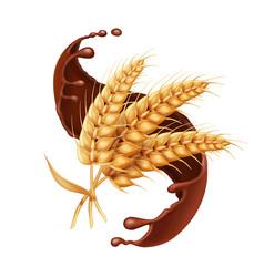 Barley or wheat ear in chocolate splash icon vector