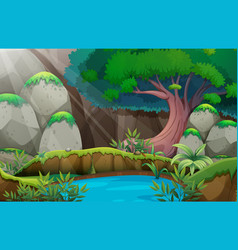 forest scene with waterhole vector image