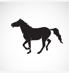 horse isolated on white background wild animals vector image