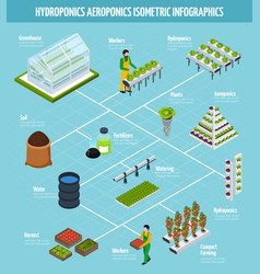 hydroponics infographic set vector image vector image