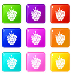 Raspberry or blackberry icons 9 set vector