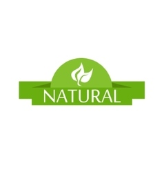 Bright green label with leaves for natural vector image