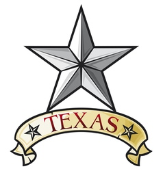star - symbol of the state of Texas vector image vector image