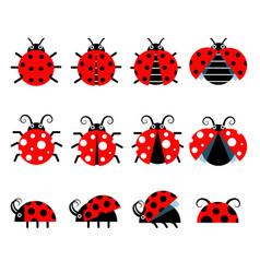 cute ladybug icons cartoon-style bug icons vector image