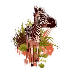 Graphic zebras walking forward in steppe vector
