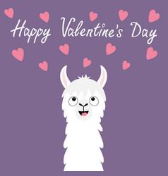 Happy valentines day llama alpaca animal face vector