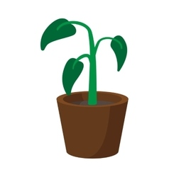 House plant in pot cartoon icon vector