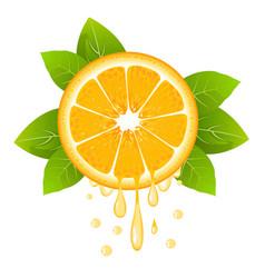 Orange slice with drops of juice juicy fruit vector