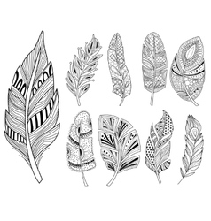 Ornamental Feathers in Handdrawn Style Vestor vector image