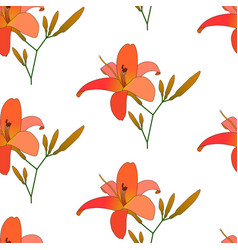 blooming lilies floral pattern vector image