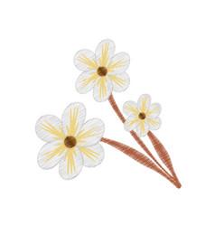 drawing jasmine flower ornament vector image