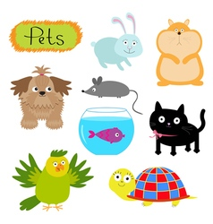 Pet set Dog cat humster fish parrot turtle vector image