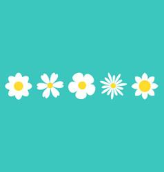 Camomile set line white daisy chamomile icon vector