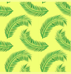 coconut palm leaves pattern vector image