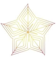 Orange star vector
