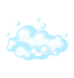 soap suds with bubbles vector image
