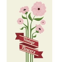 vintage flowers frame decoration vector image