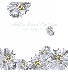 Wedding Invitation delicate aster flowers card vector image