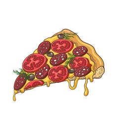 pizza slice icon on white vector image