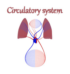 Human organ icon in flat style circulatory system vector