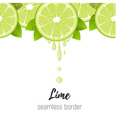lime slice seamless border citrus juice drops vector image