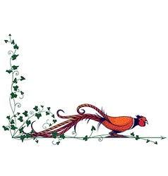 Pheasant and ivy vector