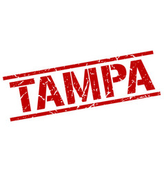 tampa red square stamp vector image
