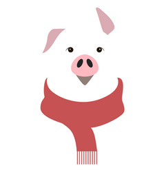 year of the pig vector image