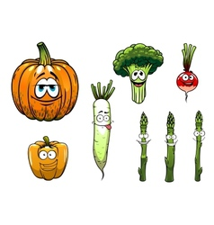 Broccoli asparagus radishpumpkin and pepper vector image vector image