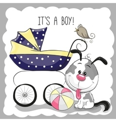 Greeting card it is a boy vector image vector image