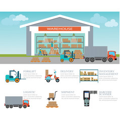 infographic of warehouse load boxes and pallet vector image