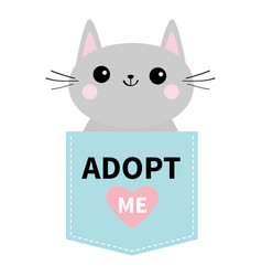 Adopt me dont buy cat in blue pocket pet adoption vector