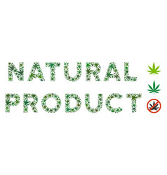 Natura product text composition of weed leaves vector