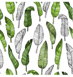 Seamless leaves pattern with tropical leaves vector