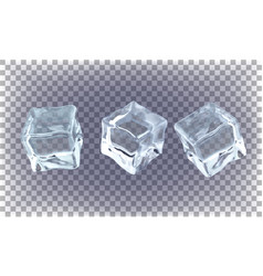 set ice cubes on a transparent background vector image