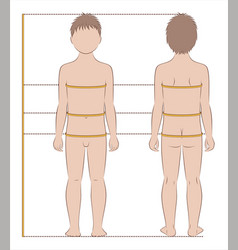 Childs body measurements vector