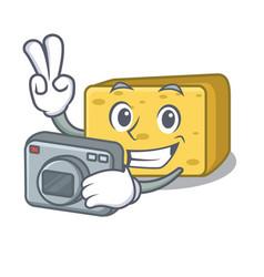 Photographer gouda cheese pieces cartoon vector
