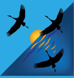 Storks on sundown sun vector