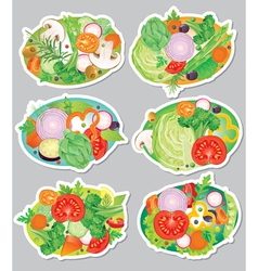 Vegetables sticker vector image vector image