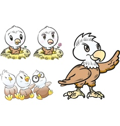 young eagle character vector image