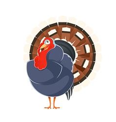 Cartoon smiling Turkey vector image