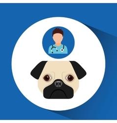 doctor cartoon veterinarian dog pug vector image vector image