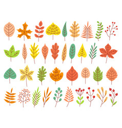 autumn leaves yellow autumnal garden leaf red vector image